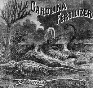 Carolina Fertilizer advertisement