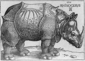 Woodcut of a rhinoceros, by Albrecht  Dürer, 1515