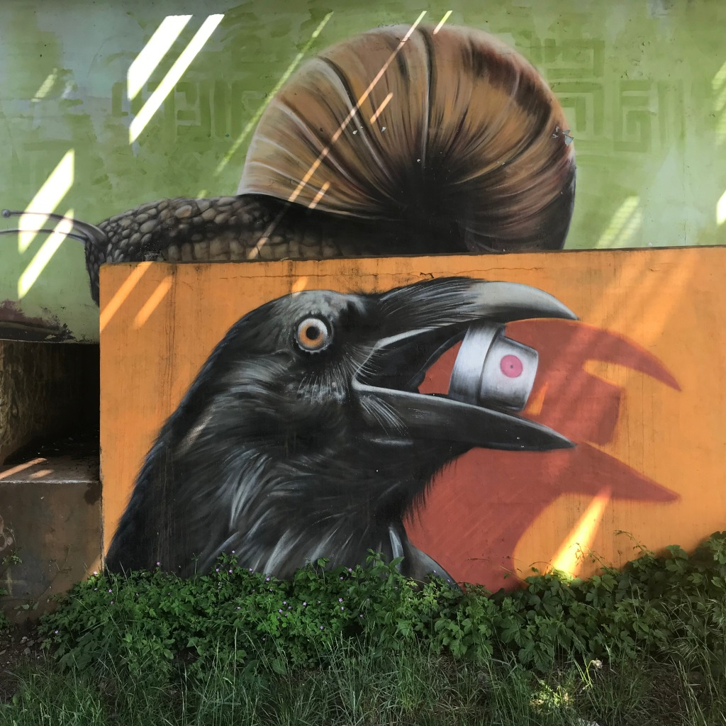 Photo of graffiti art of a large snail resting on an orange left above the head of a crow with a spray paint can nozzle gripped in its beak. Real grass and flowers grow below